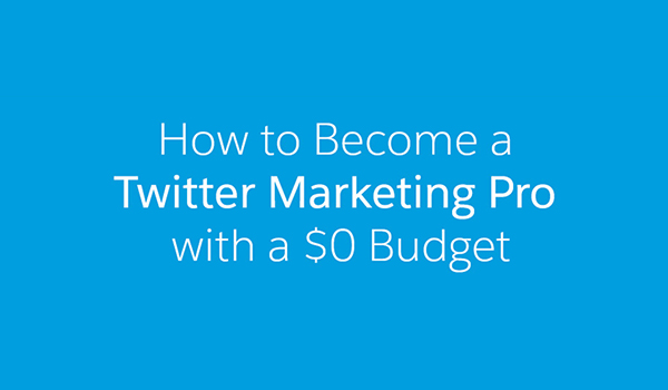 how to become a twitter marketing pro without spending a
